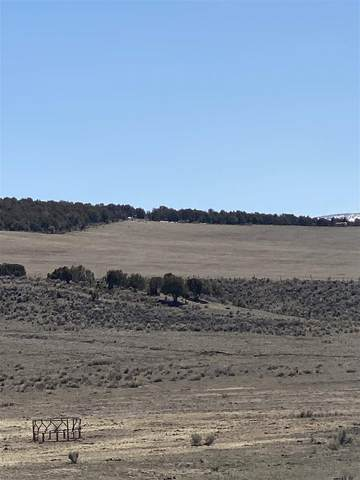 TBD County Road 15, Meeker, CO 81641 (MLS #20211479) :: The Joe Reed Team