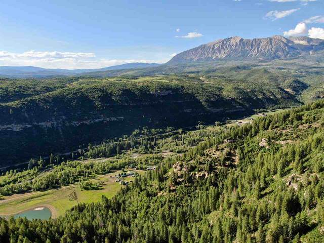 27862 County Road 12, Somerset, CO 81434 (MLS #20211532) :: CENTURY 21 CapRock Real Estate
