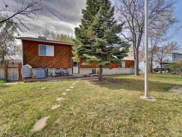 2884 1/2 Durango Drive, Grand Junction, CO 81503 (MLS #20211546) :: The Joe Reed Team
