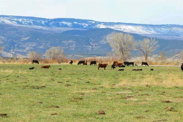 TBD Running Deer Road, Eckert, CO 81418 (MLS #20211547) :: The Kimbrough Team | RE/MAX 4000