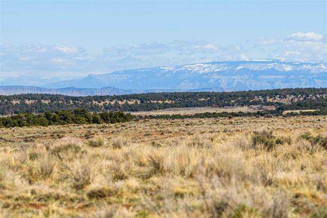 TBD Indian Camp Road, Glade Park, CO 81523 (MLS #20211570) :: The Danny Kuta Team