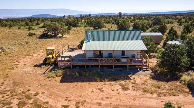 6531 Uncompahgre Divide Road, Whitewater, CO 81527 (MLS #20211591) :: The Grand Junction Group with Keller Williams Colorado West LLC