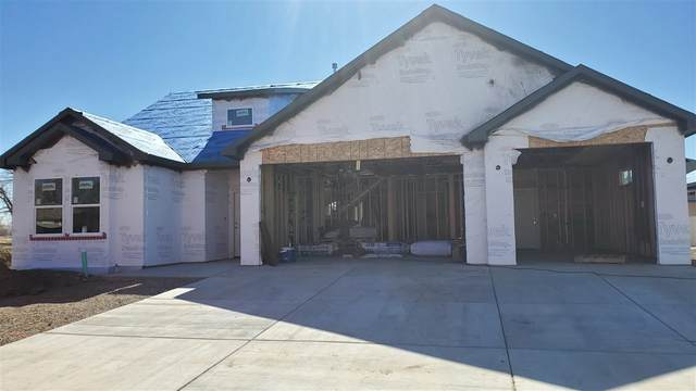 1514 Catalina Avenue, Fruita, CO 81521 (MLS #20211595) :: Lifestyle Living Real Estate