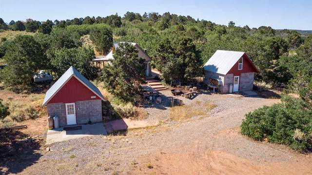 6509 Uncompahgre Divide Road, Whitewater, CO 81527 (MLS #20211599) :: CENTURY 21 CapRock Real Estate