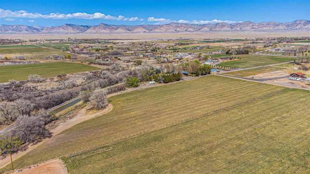 I 1/2 Road, Grand Junction, CO 81505 (MLS #20211609) :: CENTURY 21 CapRock Real Estate