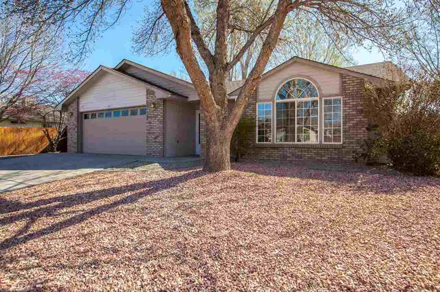 666 Chama Lane, Grand Junction, CO 81505 (MLS #20211613) :: The Kimbrough Team | RE/MAX 4000