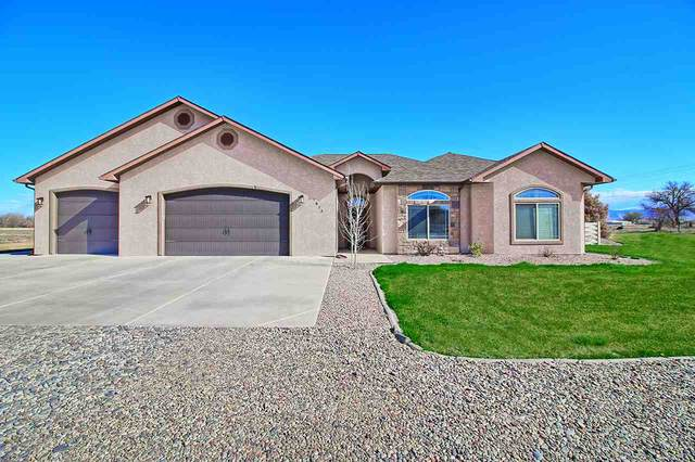 1813 Branding Iron Court, Fruita, CO 81521 (MLS #20211642) :: The Kimbrough Team | RE/MAX 4000