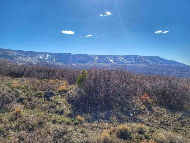 TBD Old Grand Mesa Road, Mesa, CO 81643 (MLS #20211645) :: The Christi Reece Group