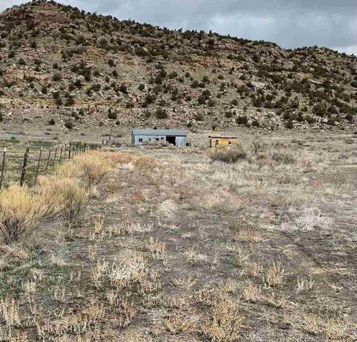 4716 Highway 6&24, De Beque, CO 81630 (MLS #20211668) :: The Christi Reece Group