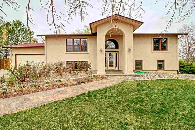 1456 O Road, Loma, CO 81524 (MLS #20211706) :: The Christi Reece Group