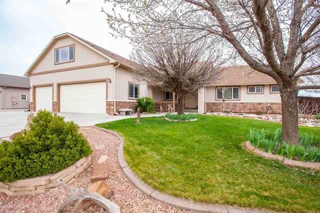 976 Murray Street, Fruita, CO 81521 (MLS #20211719) :: Lifestyle Living Real Estate