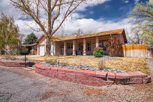 448 City View Lane, Grand Junction, CO 81507 (MLS #20211721) :: Lifestyle Living Real Estate