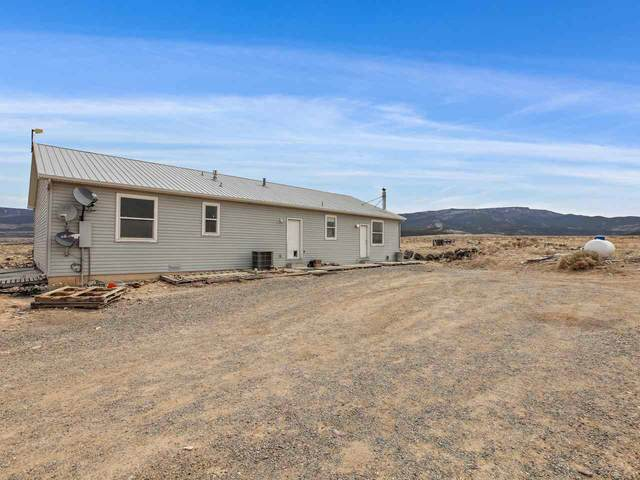 4555 Kannah Creek Road, Whitewater, CO 81527 (MLS #20211744) :: The Grand Junction Group with Keller Williams Colorado West LLC