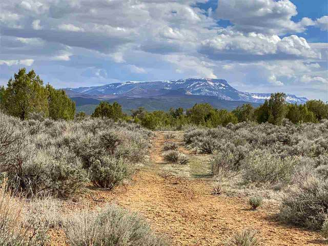 4521 Horse Canyon Road, De Beque, CO 81630 (MLS #20211779) :: The Kimbrough Team | RE/MAX 4000
