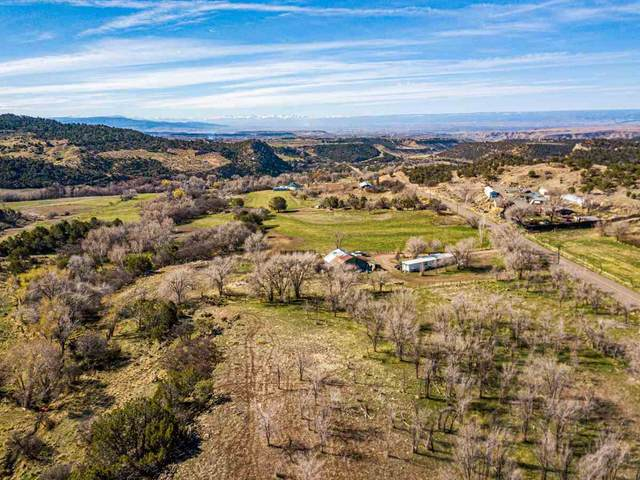 19252 Green Valley Road, Cedaredge, CO 81413 (MLS #20211802) :: The Kimbrough Team | RE/MAX 4000