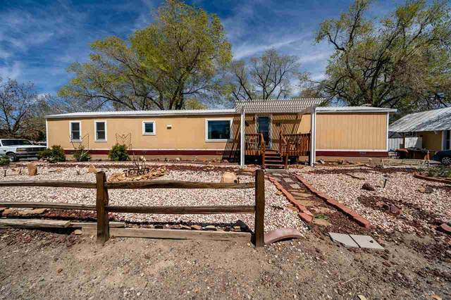 724 Unaweep Avenue, Grand Junction, CO 81503 (MLS #20211853) :: Michelle Ritter