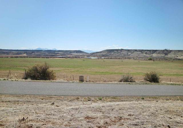 TBD 2190 Road, Eckert, CO 81418 (MLS #20211859) :: The Christi Reece Group