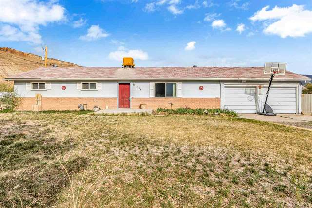 756 Garfield Drive, Palisade, CO 81526 (MLS #20211865) :: CENTURY 21 CapRock Real Estate