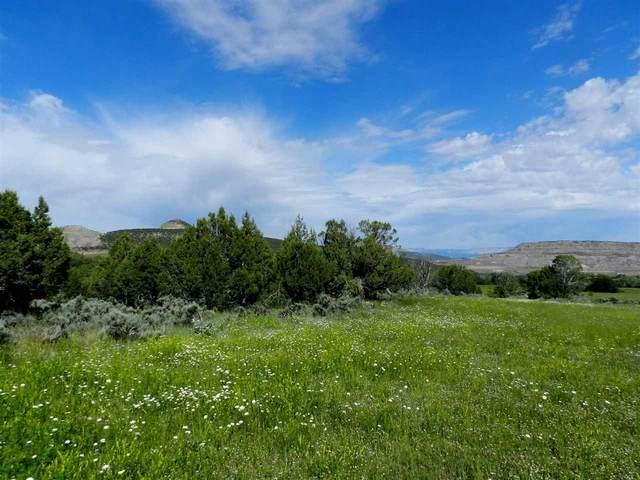 51804 Ke Road, Mesa, CO 81643 (MLS #20211897) :: CENTURY 21 CapRock Real Estate