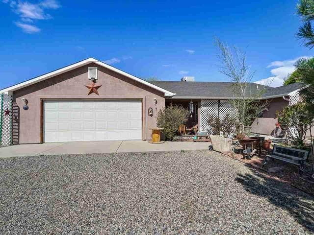 1315 1/2 M 1/2 Road, Loma, CO 81524 (MLS #20211935) :: Western Slope Real Estate