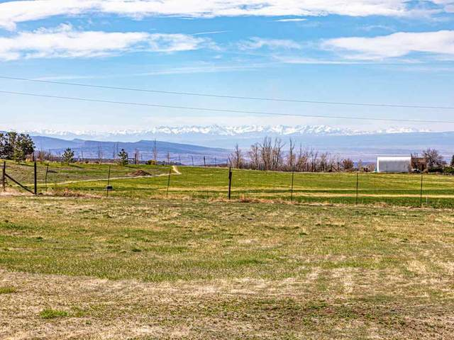 19484 2375 Road, Cedaredge, CO 81413 (MLS #20211949) :: The Grand Junction Group with Keller Williams Colorado West LLC