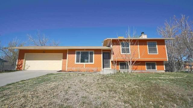 463 Rob Ren Drive, Grand Junction, CO 81504 (MLS #20211986) :: The Joe Reed Team