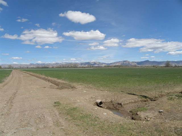 TBD L Road, Fruita, CO 81521 (MLS #20212140) :: Lifestyle Living Real Estate