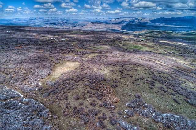 53367 Bull Basin Road, Mesa, CO 81643 (MLS #20212159) :: CENTURY 21 CapRock Real Estate