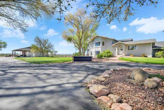 1171 20 Road, Fruita, CO 81521 (MLS #20212192) :: The Grand Junction Group with Keller Williams Colorado West LLC
