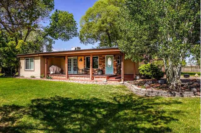 677 31 Road, Grand Junction, CO 81504 (MLS #20212233) :: The Kimbrough Team | RE/MAX 4000