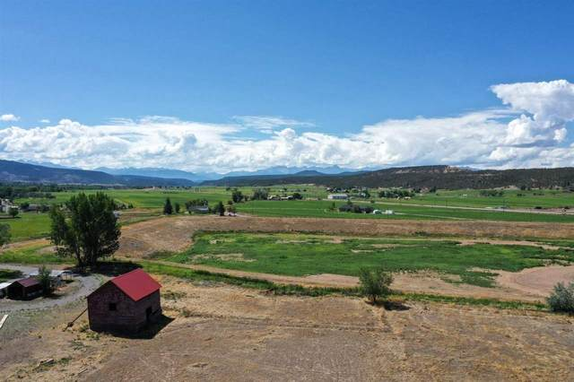 Lot 2 Vernal Road, Montrose, CO 81403 (MLS #20212250) :: The Joe Reed Team