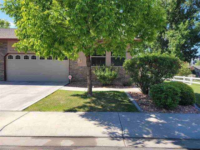 1505 Treehaven Court, Grand Junction, CO 81506 (MLS #20212369) :: The Danny Kuta Team