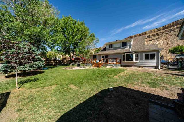 569 Rosa Street, Palisade, CO 81526 (MLS #20212392) :: The Kimbrough Team | RE/MAX 4000