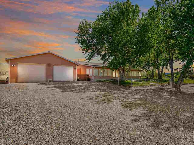 1370 15 1/2 Road, Loma, CO 81524 (MLS #20212484) :: Lifestyle Living Real Estate