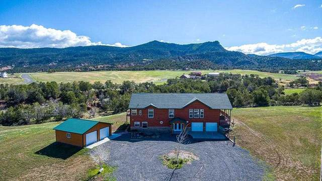 14250 S Ouray Court, Collbran, CO 81624 (MLS #20212562) :: The Joe Reed Team