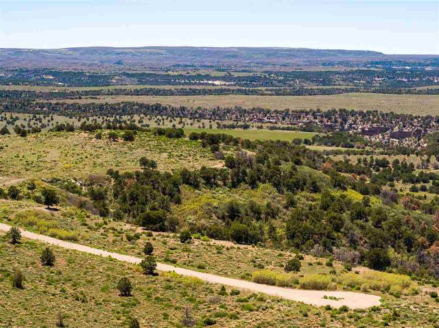 TBD Lot 48 Eagle View Drive, Glade Park, CO 81523 (MLS #20212605) :: The Kimbrough Team | RE/MAX 4000