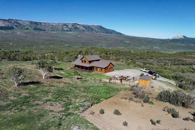 49678 Coon Creek Road, Mesa, CO 81643 (MLS #20212643) :: The Joe Reed Team
