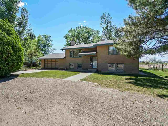819 22 Road, Grand Junction, CO 81505 (MLS #20212650) :: The Grand Junction Group with Keller Williams Colorado West LLC