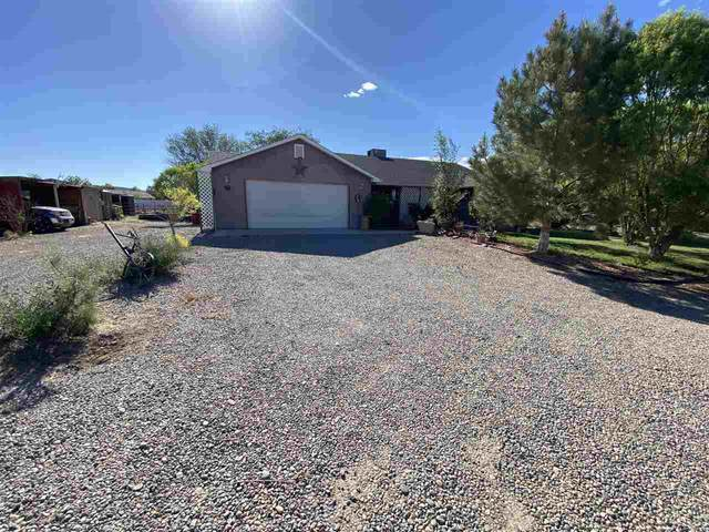 1315 1/2 M 1/2 Road, Loma, CO 81524 (MLS #20212682) :: Lifestyle Living Real Estate