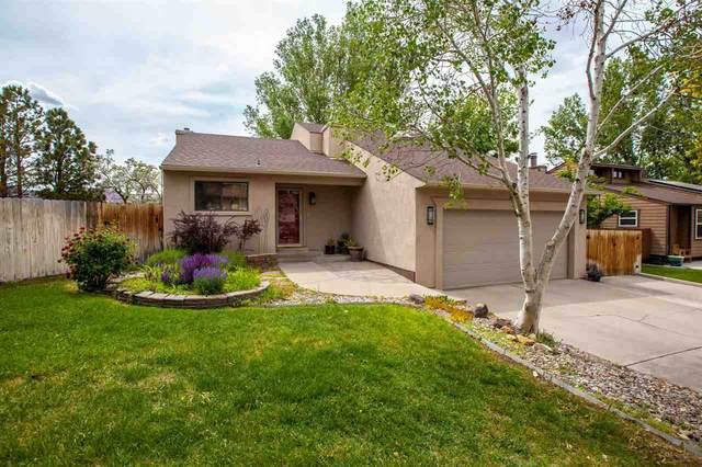 365 Plateau Drive, Grand Junction, CO 81507 (MLS #20212698) :: The Danny Kuta Team