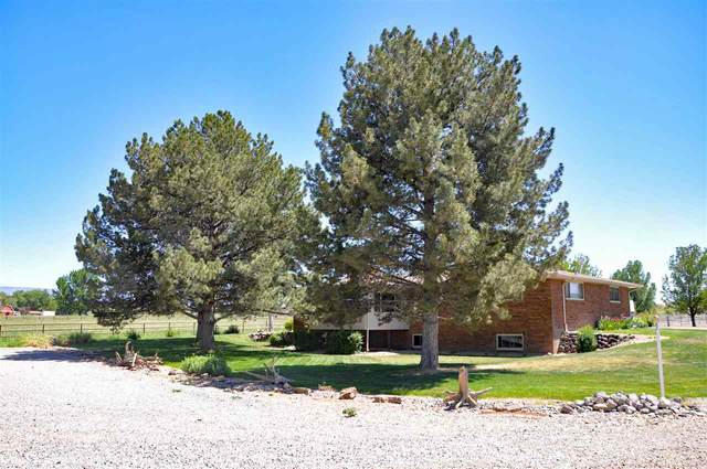 3403 D Road, Palisade, CO 81526 (MLS #20212712) :: Lifestyle Living Real Estate