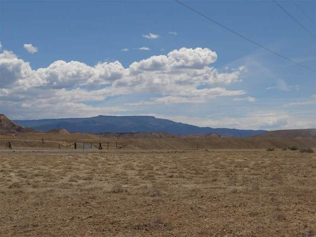 2995 Reeder Mesa Road, Whitewater, CO 81527 (MLS #20212741) :: The Christi Reece Group