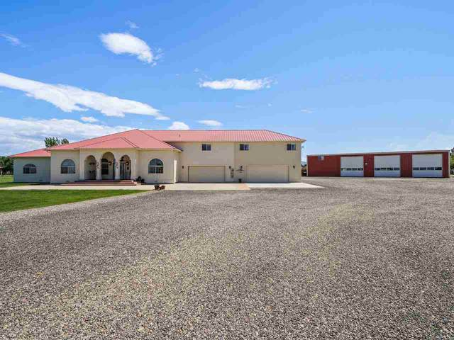 1110 22 Road, Grand Junction, CO 81505 (MLS #20212787) :: The Kimbrough Team | RE/MAX 4000