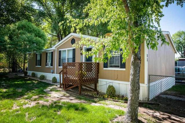 825 E Ottley Avenue D3, Fruita, CO 81521 (MLS #20212813) :: Michelle Ritter