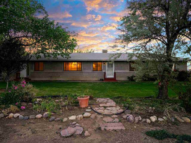 271 29 3/4 Road, Grand Junction, CO 81503 (MLS #20212814) :: The Kimbrough Team | RE/MAX 4000