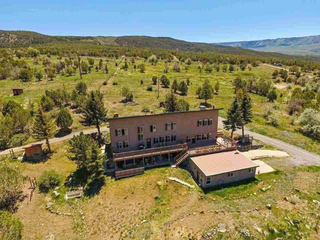 50158 Eagles Way, Mesa, CO 81643 (MLS #20212816) :: Lifestyle Living Real Estate
