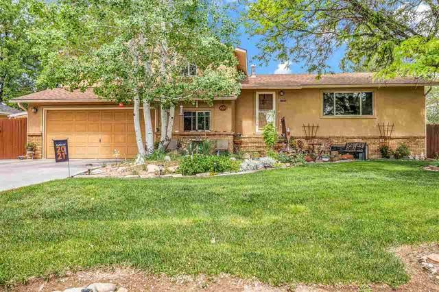 3630 Elderberry Circle, Grand Junction, CO 81506 (MLS #20212827) :: Western Slope Real Estate