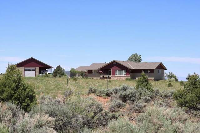 13740 Sage Brush Lane, Glade Park, CO 81523 (MLS #20212836) :: The Kimbrough Team | RE/MAX 4000