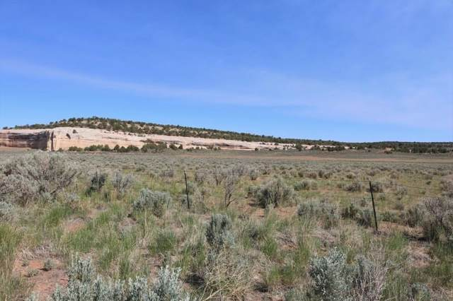 TBD Bs Road, Glade Park, CO 81523 (MLS #20212837) :: The Kimbrough Team | RE/MAX 4000