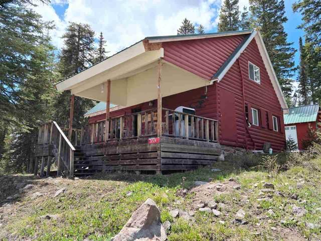 26524 Trail Ridge Road, Cedaredge, CO 81413 (MLS #20212852) :: Michelle Ritter